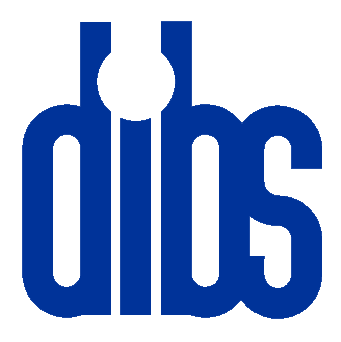 Managed IT Services in Los Angeles | DIBS Inc